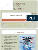 International Political Environment-21Mar2014