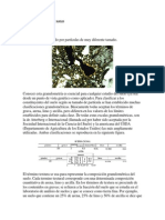 propiedadesfsicasdelsuelo-120907152456-phpapp02