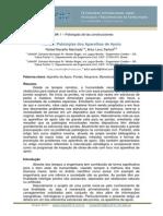 Pontes_ Patologias dos aparelhos de apoio..pdf