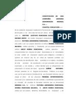 deber CONSTITUCION  DE   UNA COMPAÑÍA ANONIMA DENOMINADA  NEGOCIOS  FARMACEUTICOS  SALAS gloria