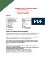 2013silabo -Practicas Profesionales Modificar