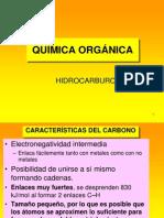 formulacion Hidrocarburos