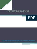 Equipo 4 Protozoarios