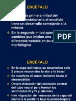 ENCEFALO1