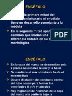 ENCEFALO2