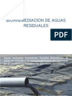 Biorremediacion de Aguas Residuales Ultima