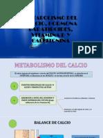 Metabolismo Del Calcio, Hormona Paratiroides, Vitamina (1)