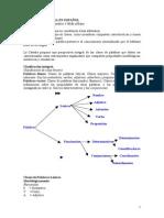 105802770 Clases de Palabra en Espanol Resumen