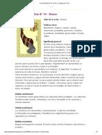 Oraculo Belline Nº 19 - Dinero _ La Magia del Tarot