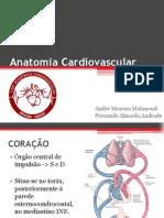 Anatomia Cardiovascular - LAC