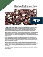 Tasik Siap Jadikan Jengkol Hasil Pertanian Utama