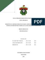 Wa Ode Veby Verlina Samrin_Universitas Hasanuddin_PKMP