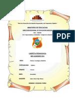Carpeta pedagogica 2014