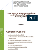 Tutela Sectorial de los Bienes Jurídicos Ambientales de Venezuela.pptx