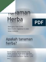 Tanaman Herba - Lingkeshan & Julian Loo