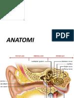 Anatomi Telinga Dan Kelainannya