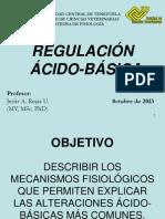 Acido básico 2013