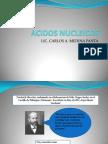 Acidos Nucleicos Biologia Molecular