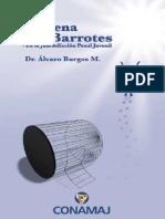 Alvaro Burgos - La Pena Sin Barrotes