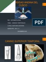 expo dentaria.pptx