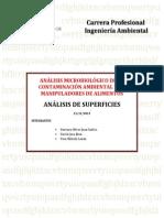 ANÁLISIS MICROBIOLÓGICO DE LA CONTAMINACIÓN AMBIENTAL Y DE MANIPULADORES DE ALIMENTOS
