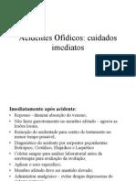 Acidentes Ofídicos. cuidados imediatos e tratamentos