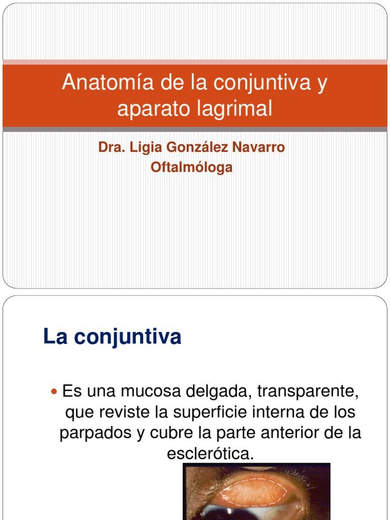 Anatomia de La Conjuntiva y Aparato Lagrimal