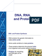 dna-proteins