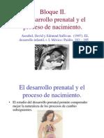 6363792 El Desarrollo Prenatal[1]