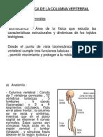 Diapos Fisica Biomec Columna
