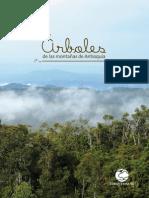 Arboles de las montañas de Antioquia