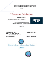 Customer Satisfaction Project Report