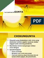 Penyuluhan Chikungunya Fix