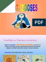 parasitoses_diversas