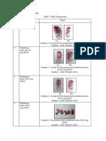Hasil praktikum teratologi, matakuliah embriologi hewan