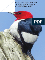 Where to Bird in Ulster County & Checklist