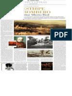 La Estirpe de Bombero del escritor Alberto Ried.pdf