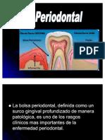 62300574 Bolsa Periodontall