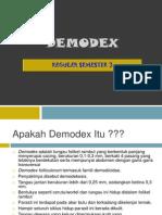 Demo Dex