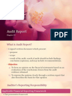 Audit Report chapter 19