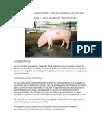 Engorda de Cerdos