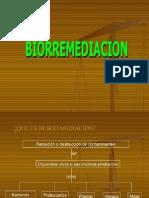 BIORREMEDIACIÓN DE SUELOS