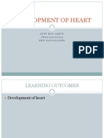 Development of Heart