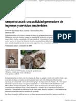 Meliponicultura_ una actividad generadora de ingresos y servicios ambientales — AgriCultures Network