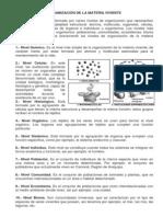 ORGANIZACIÓN DE LA MATERIA VIVIENTE