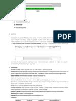 Programa de Seguridad.pdf