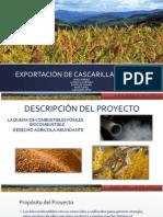 Exportacion Cascarilla de Arroz