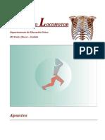 Anatomia y Otros Temas