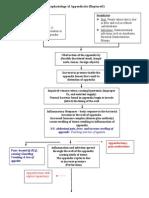 26468350 Pathophysiology of Appendicitis Ruptured