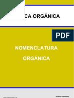 Nomenclatura Demo PDF